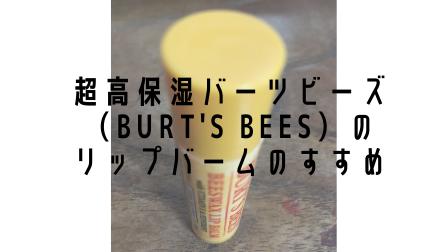 バーツビーズ(BURT'S BEES)のリップバームが高保湿で乾燥肌のリップ下地におすすめ